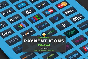 PAYMENT / CREDIT CARD VECTOR ICONS D