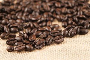 coffee beans isolated on brown
