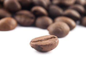 A coffee bean focused