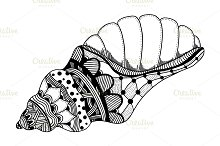 Hand Drawn sea shell.