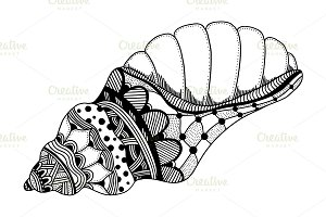 Hand Drawn sea shell.