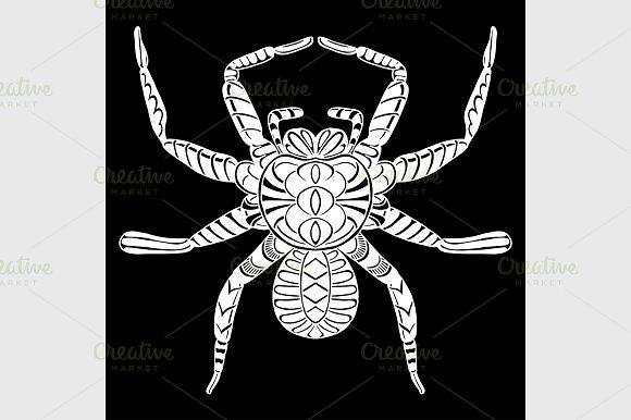 stylized spider. Animals. - Graphics