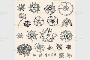 set of sketched flowers
