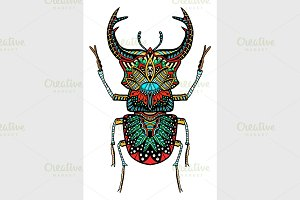 Vector color beetle