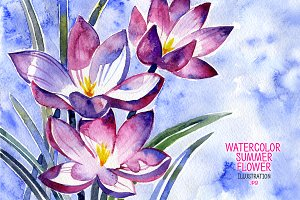 Watercolor summer flower.