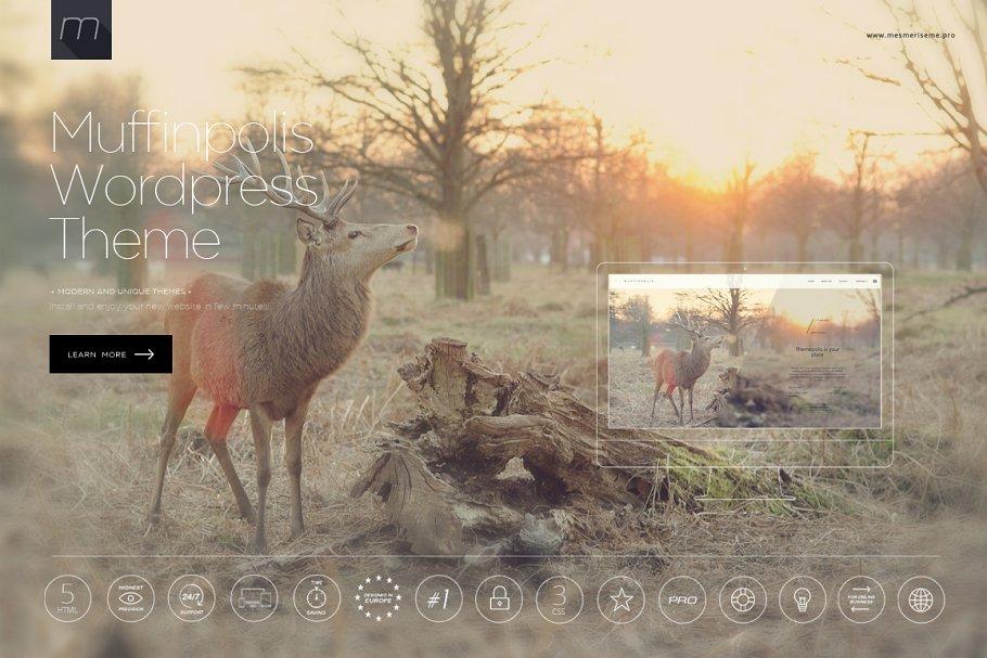 23+ Stunning WordPress Themes & Templates
