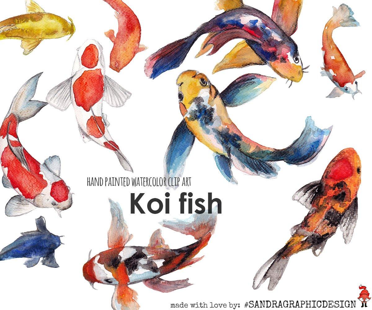 Koi fish watercolor clipart illustrations creative market for Koi fish watercolor