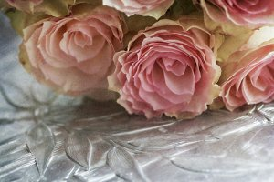 Romantic Roses and Silver Tray
