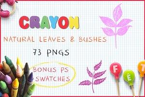 Crayon Natural Leaves and Bushes