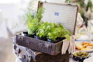 Old Suitcase With Herbs