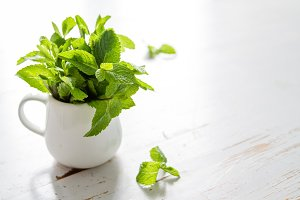 Mint leaves in white jar