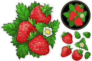 Set ripe juicy strawberries