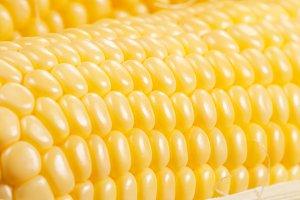 Corn cobs (maize), macro
