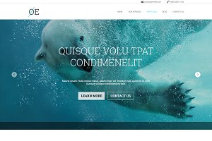 OE - OnePage PSD Template