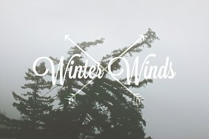 Winter Winds II / 2013