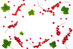 Summer background with red currant