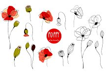 Poppy. Elements & Pattern Swatches