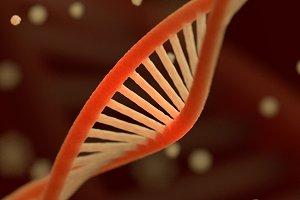 DNA chain macroshot.