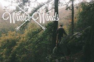 Winter Winds III / 2013