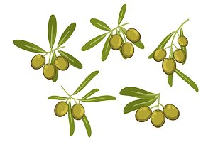 Italian green olives icons