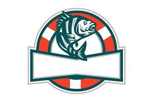 Sheepshead Fish Jumping Lifesaver