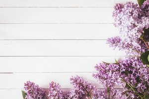 Lilac flowers on white wood