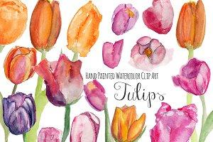 Tulips watercolor clip art