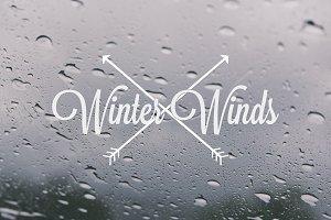 Winter Winds V / 2013