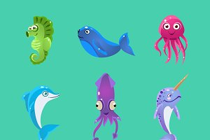 Colourful Sea Creatures