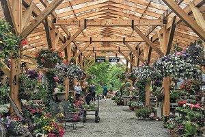 Greenhouse Garden Oasis