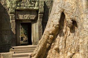 Ta Prohm Temple Entrance