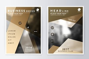 Annual report and brochure.