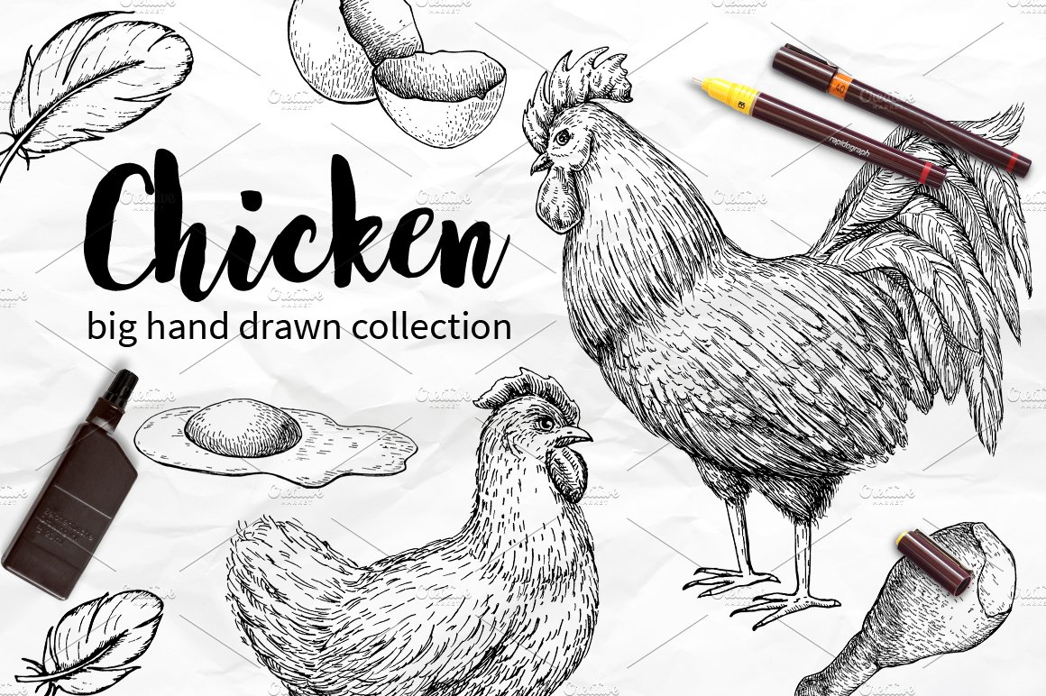 Chicken Hand Drawn Set Graphics Creative Market Meat Diagram Symbol