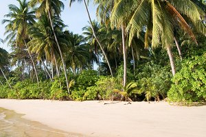 Ko Mak Island Beach in Thailand