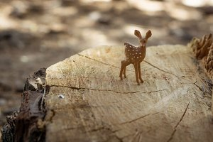 Deer wood toy