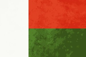 True proportions Madagascar flag