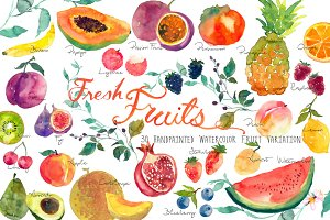 Fresh Fruits -Handpainted Watercolor