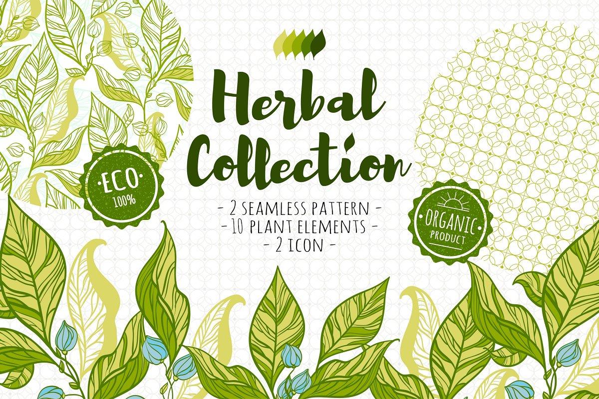Herbal collection (+bonus)