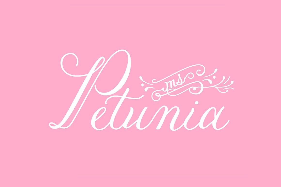 Petunia ~ Script Fonts ~ Creative Market