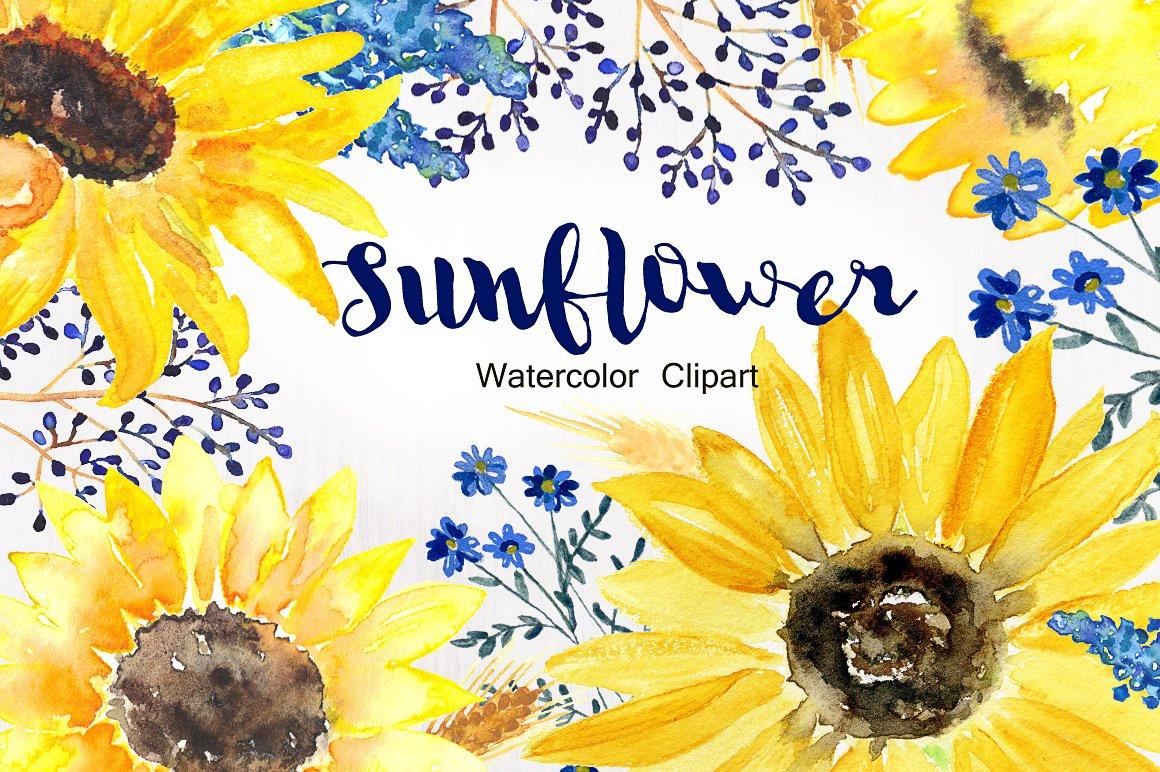 Sunflower Watercolor Clip Art Illustrations Creative Market