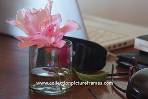 Flower on Desk