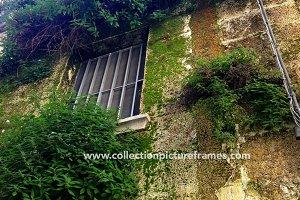 Wall gardens - Rome, Italy