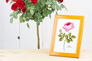 Provence Floral Card Design Set