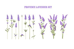 Provence Lavender Set