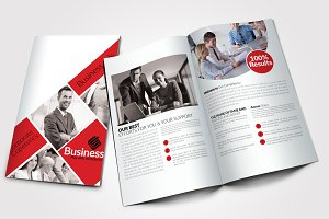 8 Pages Business Bi Fold Brochure