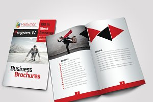 10 Pages Bi Fold Brochure Catalog