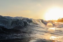 Waves in the Setting Sun