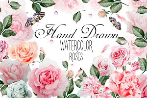 Hand drawn watercolor roses 2