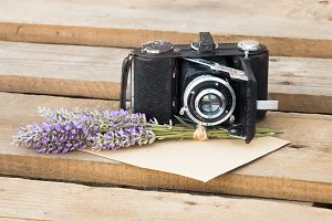 Lavender and camera.
