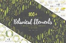 Vector Botanical Elements +Extras!